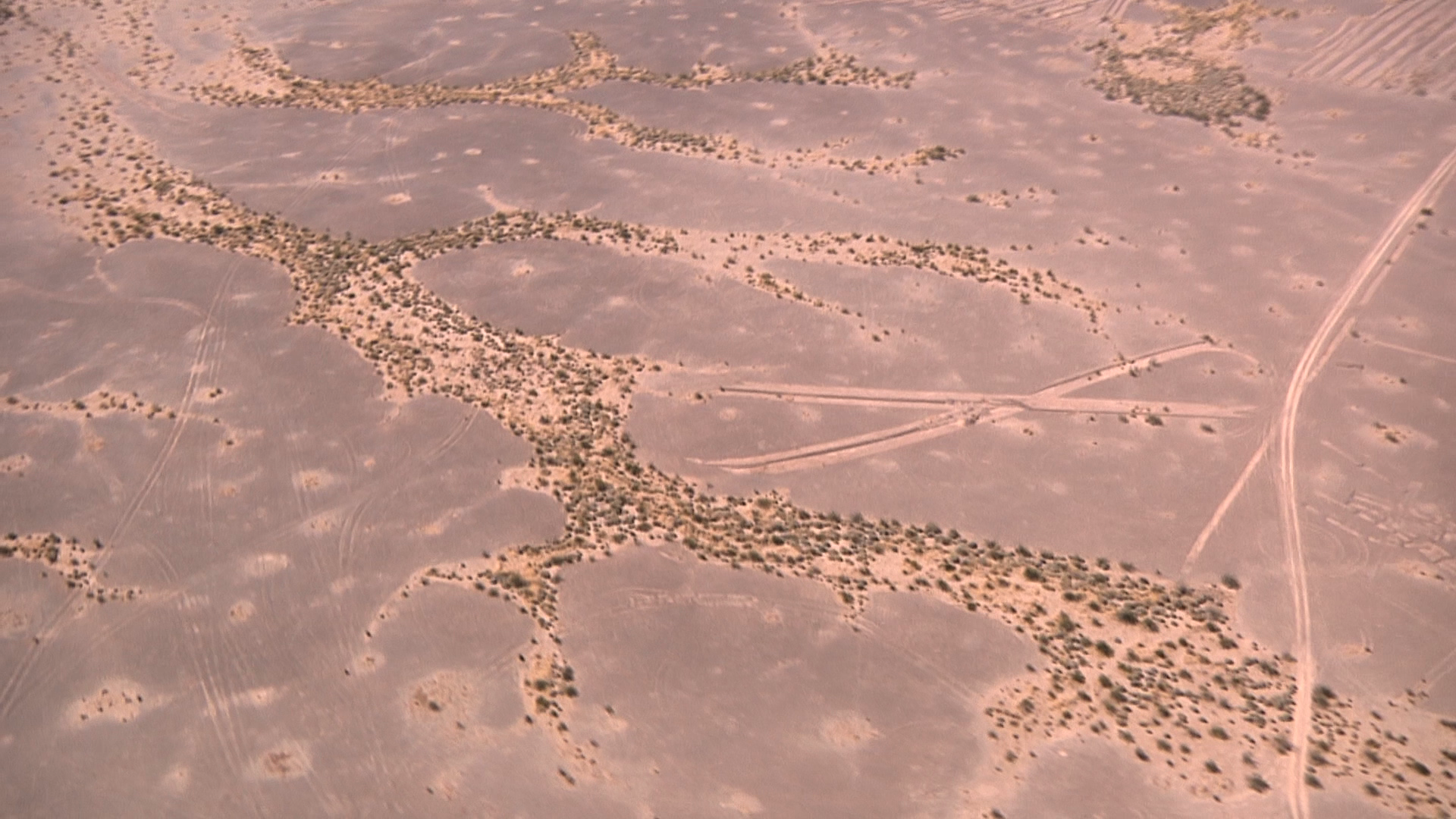 What do the Geoglyphs Mean?