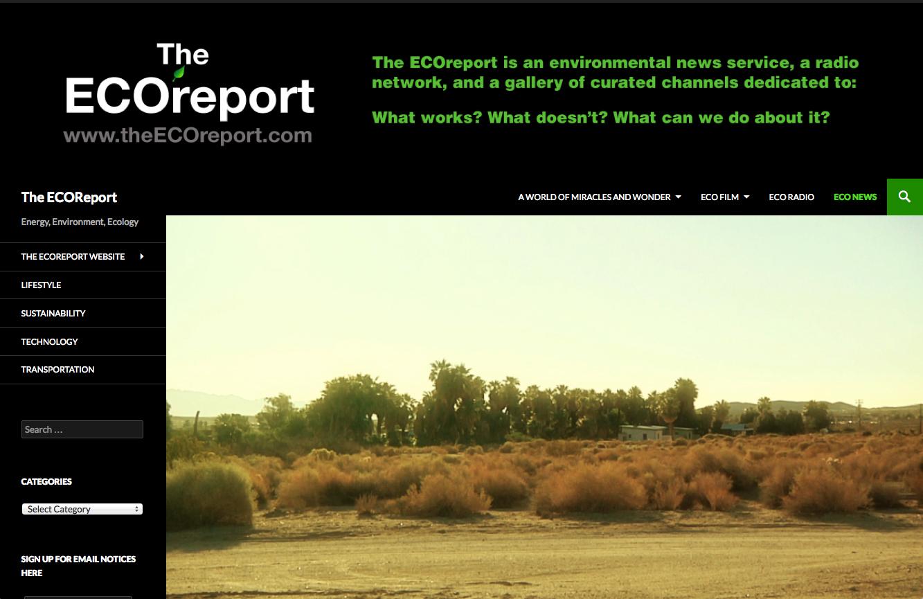 eco_report_black_2