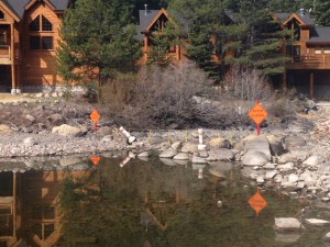 Photo Credit: River Ranch – 5 miles downstream from Tahoe City by Dave Howard