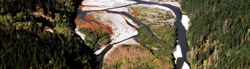 Delta Looking North